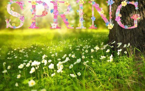 Things to Do This Spring Season!