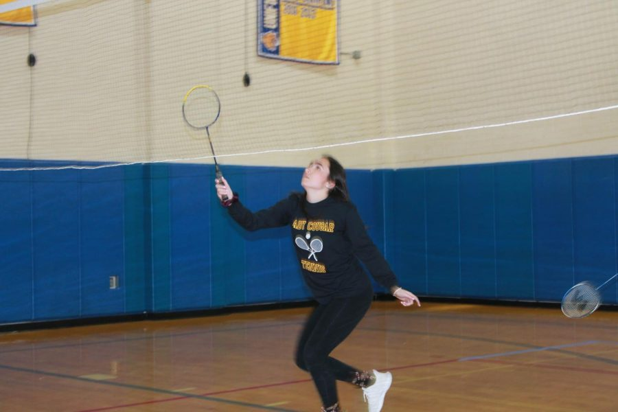 Students+Participate+in+Annual+Badminton+Tournament