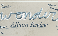 Shawn Mendes' Wonder: A Review