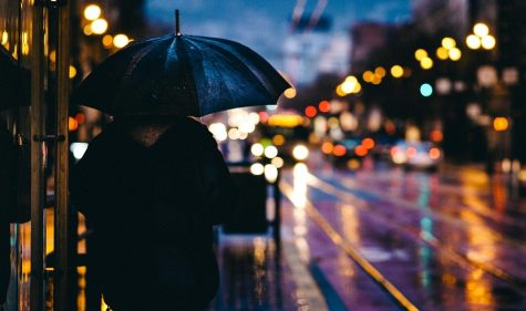 Poetry: Oh, How I Love the Rain!